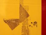 Žlutá v Sušici 2009