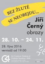 Jiří Černý - Bez žluté se neobejdu