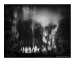Ivan Vala, Bez názvu, 2014, černobílý digitální tisk