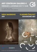 Vladimír Židlický - Die private Spiele / Sára Saudková - Joy